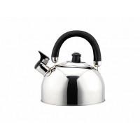 Чайник со свистком Чудесница ЧС-2500